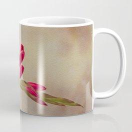 Kaffir Lily Coffee Mug