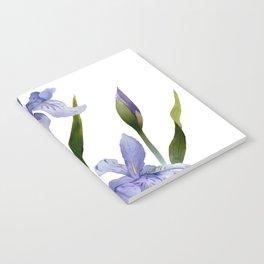 Purple Iris Notebook