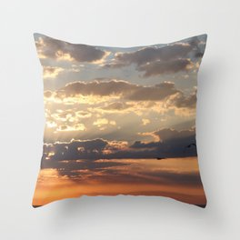 Mexico Sunset Share with the Birds Throw Pillow