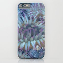 Flowers of the Sea iPhone Case