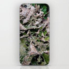 Life on a Fallen Tree iPhone Skin