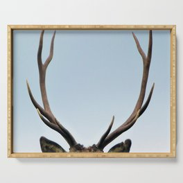 Stag antlers Serving Tray