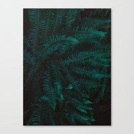 Blue Fern Twilight Canvas Print