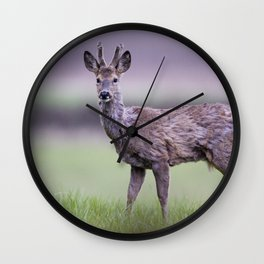 ROE DEER IN SPRING Wall Clock