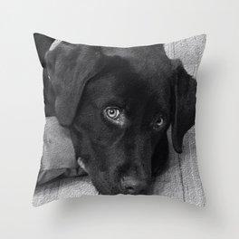 Puppy Portrait Textured Throw Pillow