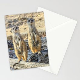 A couple of meerkats Stationery Cards