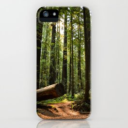 Humboltd Redwoods State Park iPhone Case