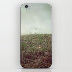 SOLITUDE iPhone & iPod Skin