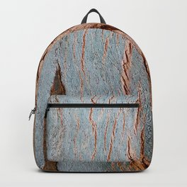 Eucalyptus Tree Bark and Wood Texture 18 Backpack