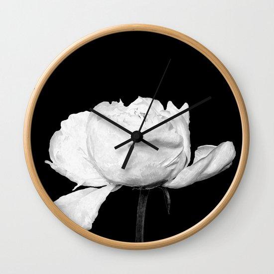 White Peony Black Background by alemi