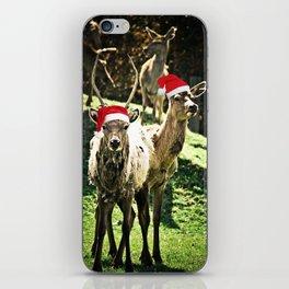 Tis The Season - Reindeer iPhone Skin