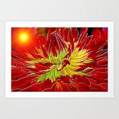 Sunburst Dahlia Art Print