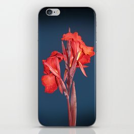 Canna Lily iPhone Skin