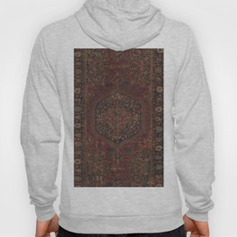 Boho Chic Dark I // 17th Century Colorful Medallion Red Blue Green Brown Ornate Accent Rug Pattern Hoody