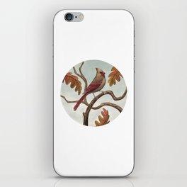 Cardinal (Female) iPhone Skin