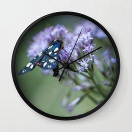 A black butterfly on a wildflower Wall Clock