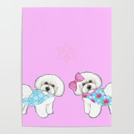 Bichon Frise Dogs in love- wearing pink and blue coats Poster