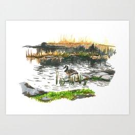 Facing water Art Print