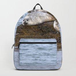 Watercolor Harbor Seal 04, Reykjarfjörður Iceland Backpack
