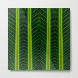 Palm line Metal Print