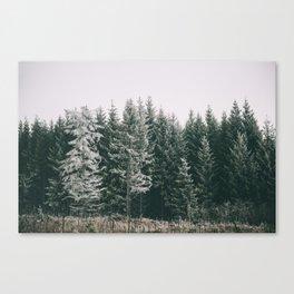 Winter VIII Canvas Print