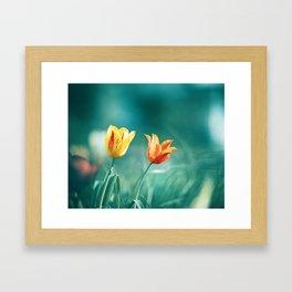Teal Orange Nature Photography, Turquoise Yellow Tulips Photo, Aqua Teal Green Flower Art Print Framed Art Print