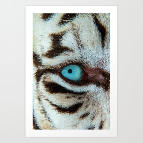 WHITE TIGER BEAUTY Art Print
