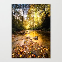 Below The Falls Canvas Print