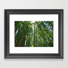 i want to be on the tops of all the trees Framed Art Print