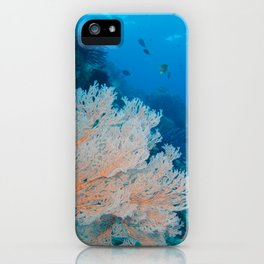 The coral looks beautiful from down here iPhone Case