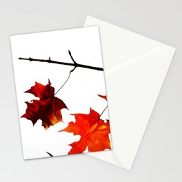 Sugar Maple Leaves in Autumn Stationery Cards