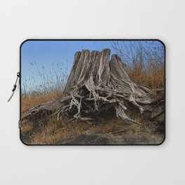 WEATHERED STUMP AND ROOTS ON BEACHSIDE BLUFF Laptop Sleeve