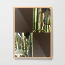 Cactus Garden Blank Q3F0 Metal Print