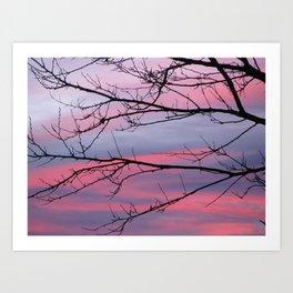 December Sunset Art Print