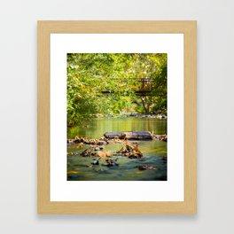 Leaves Falling in Big Chico Creek Framed Art Print