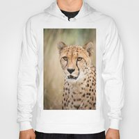 cheetah Hoodies featuring Cheetah by Simon's Photography