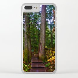 Giant Cedars Boardwalk in Revelstoke BC, Canada Clear iPhone Case