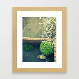 springing. Framed Art Print
