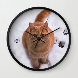 Ginger Kitty Discovers Snow! Wall Clock