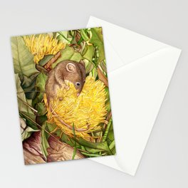 Honey Possum in Dryandra Stationery Cards