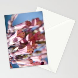 Trumpet Overflow Stationery Cards
