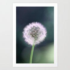 lone dandelion  Art Print