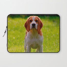 beagle puppy on guard Laptop Sleeve