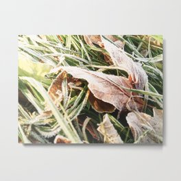 Winter Yellow Leaves Mobilestock Metal Print