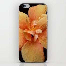 Yellow Hibiscus iPhone Skin