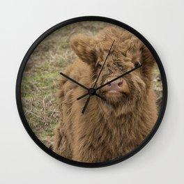 Scottish Highland baby cow Wall Clock