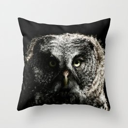 The phantom of the north Throw Pillow