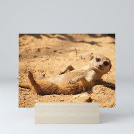 Meerkat Suricat suricatta Sunbathing #decor #society6 Mini Art Print