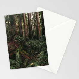 Redwood Forest Floor Stationery Cards