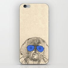 dog with glasses iPhone & iPod Skin